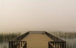 有雾的天场面 图库摄影