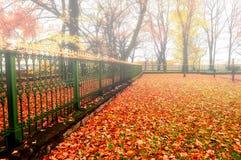 有雾的天气的-五颜六色的秋天风景秋天公园 库存图片