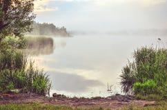 有雾的天空和绿草由湖 免版税库存照片