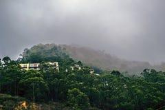 有雾的山在北加利福尼亚 库存照片