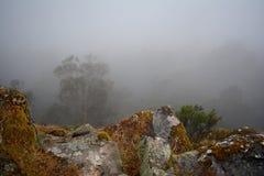 有雾的山场面 免版税库存图片