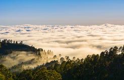 有雾的山惊人的自然风景  自然的森林 Lo 免版税库存图片