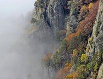 有雾的山森林 免版税库存照片