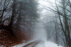 有雾的山路 免版税图库摄影