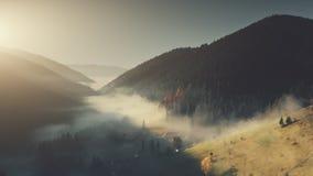有雾的山风景密集的森林鸟瞰图 股票视频