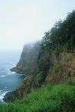 有雾的峭壁 免版税库存图片