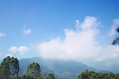 有雾的峰顶 免版税库存图片