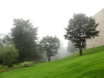 有雾的庭院 库存图片