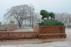 有雾的彼得斯堡 库存图片