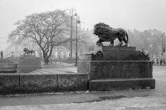 有雾的彼得斯堡 免版税库存图片
