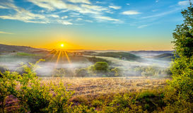 有雾的托斯坎早晨 库存图片