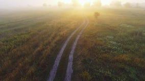 有雾的日出在乡下 空中寄生虫射击 股票视频