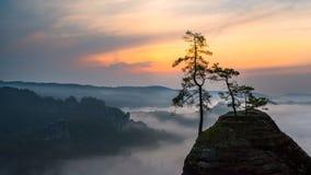 有雾的日出在萨克森瑞士 免版税库存照片