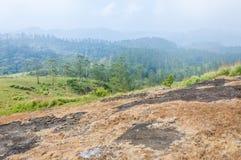 有雾的日出在贝里亚尔河国立公园,Thekkady,喀拉拉,印度 免版税库存照片