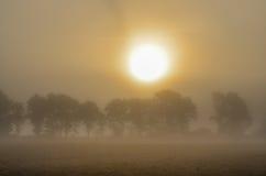 有雾的日出 免版税库存图片