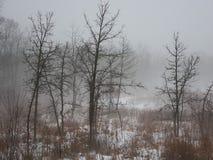 有雾的日在北伊利诺伊 库存照片