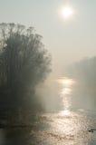 有雾的早晨公园 库存照片