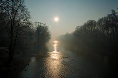 有雾的早晨公园 免版税库存图片