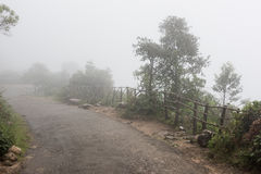 有雾的早晨在喀拉拉 库存照片