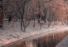 有雾的早晨在城市公园 图库摄影