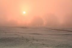 有雾的早晨在牛津。 免版税图库摄影