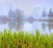 有雾的早晨横向在秋天公园 库存照片