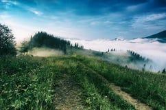 有雾的早晨横向 免版税图库摄影