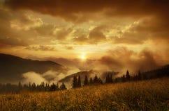 有雾的早晨横向 免版税库存照片
