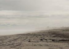 有雾的早晨海滩 免版税库存图片