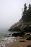 有雾的早晨 免版税图库摄影