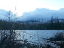 有雾的早晨 库存图片