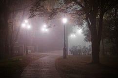 有雾的晚上在11月 库存图片