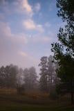 有雾的有薄雾的国家风景 免版税库存图片