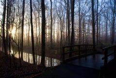 有雾的桥梁 库存照片