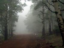 有雾的横向山犹他 免版税库存图片