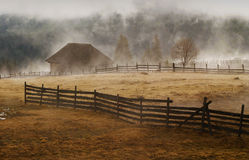 有雾的横向早晨 免版税库存图片