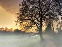 有雾的横向 免版税图库摄影