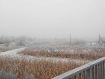 有雾的河冬天 免版税图库摄影