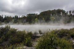 有雾的河和森林风景 库存图片