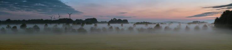 有雾的油菜领域全景  免版税库存照片