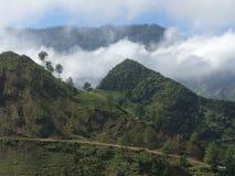 有雾的海地的山 库存照片