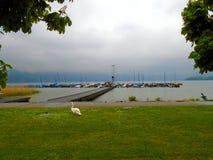 有雾的湖在奥地利 库存图片