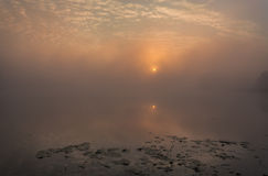 有雾的湖在日出 免版税库存图片