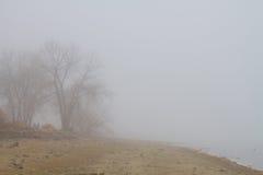 有雾的湖海岸线视图 免版税库存图片