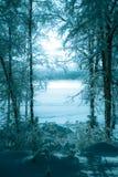 有雾的湖的冬天照片 库存照片