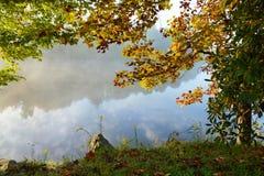 有雾的湖秋天在森林里 免版税库存照片