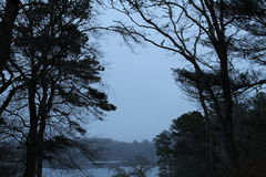 有雾的湖视图 免版税图库摄影