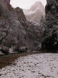 有雾的狭窄多雪的zion 库存图片