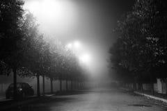 有雾的神奇夜 免版税库存图片