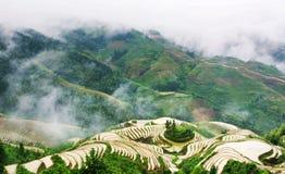 有雾的神秘的米大阳台风景在龙胜,中国 免版税图库摄影